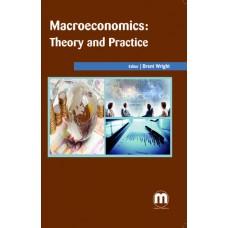 MACROECONOMICS: THEORY AND PRACTICE