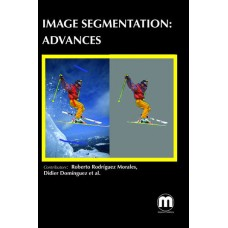 IMAGE SEGMENTATION: ADVANCES